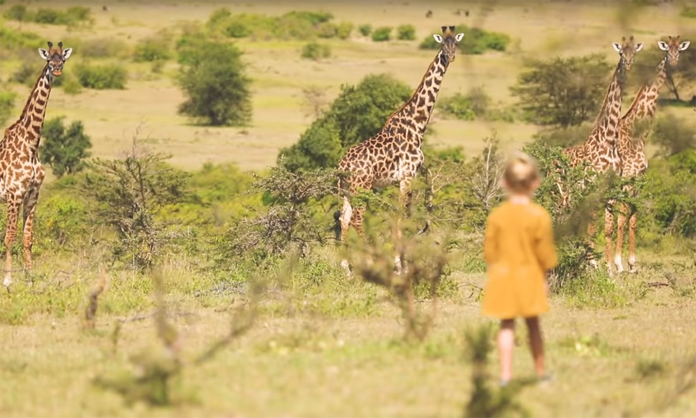 Bucket List Family safari in Tanzania Serengeti