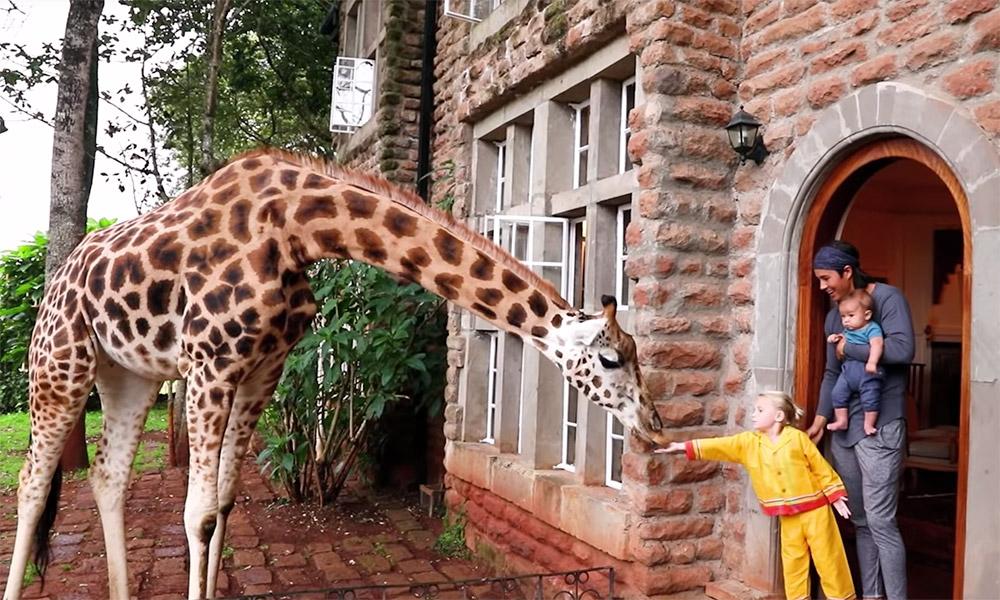 Bucket List Family at Giraffe Manor in Kenya