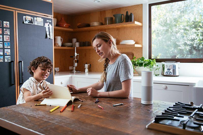 smart speaker vivint smart home